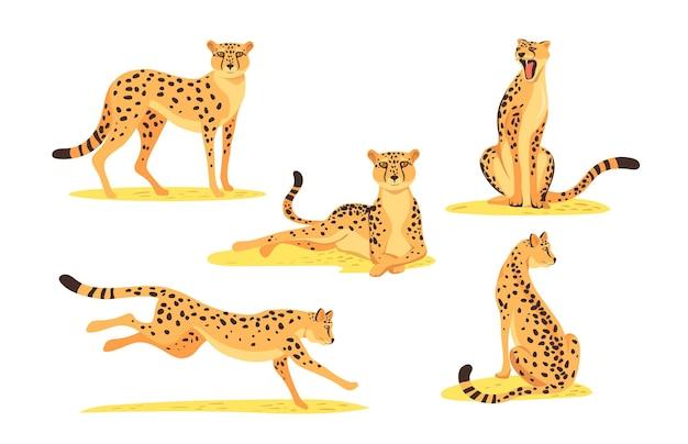 Conjunto de leopardo de desenho animado