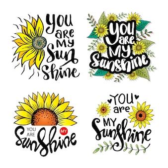 Conjunto de letras manuscritas, você é meu raio de sol