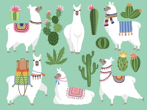 Conjunto de lhama e lã de alpaca