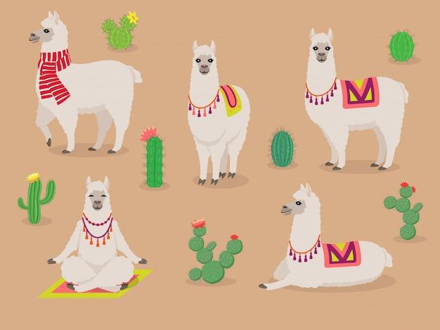 Conjunto de lhamas bonitinha em poses diferentes, deserto com cactus