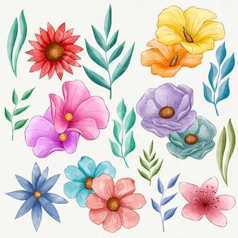Conjunto de lindas flores pintadas à mão