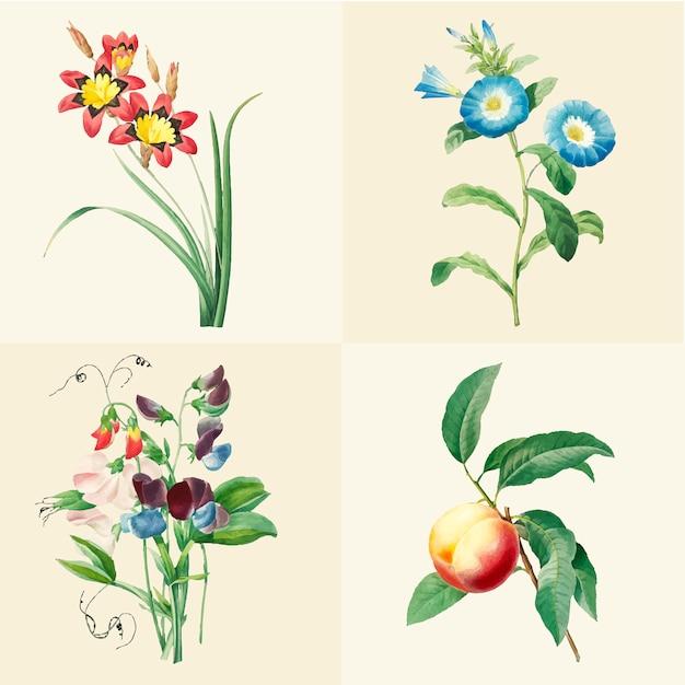 Conjunto de lindas flores silvestres desabrochando