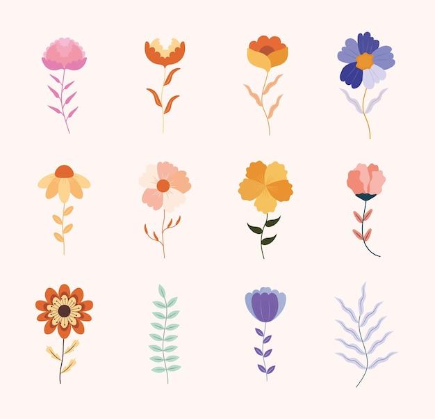 Conjunto de lindas flores