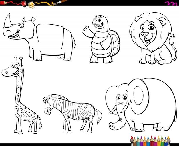 Conjunto de livro de cores de caracteres animais