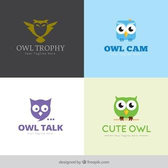 Conjunto de logo da coruja moderna