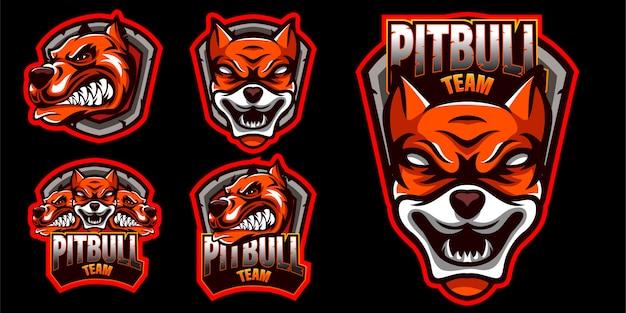Conjunto de logotipo com raiva de cachorro pitbull