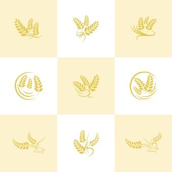 Conjunto de logotipo de agricultura de trigo