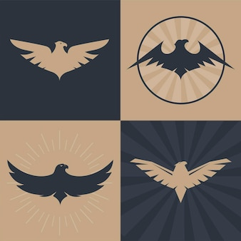 Conjunto de logotipo de águias e falcões