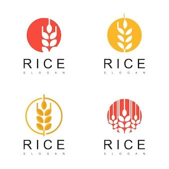 Conjunto de logotipo de arroz