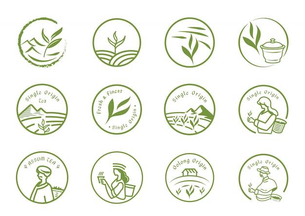 Conjunto de logotipo de chá de origem única