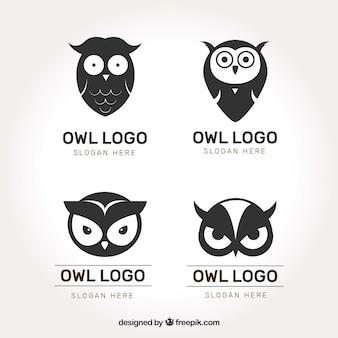 Conjunto de logotipo de coruja preto e branco