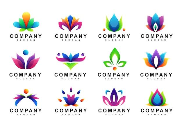 Conjunto de logotipo de folha floral colorida