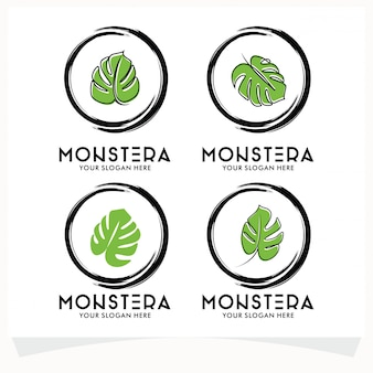 Conjunto de logotipo de folha monstera