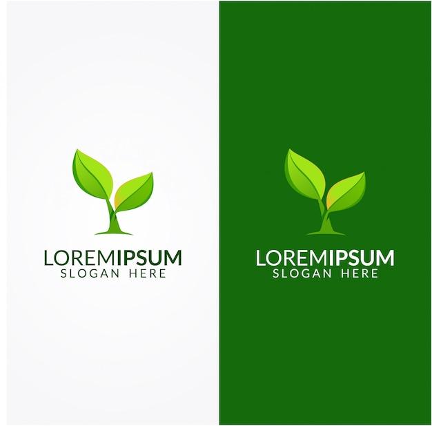 Conjunto de logotipo de folha natural