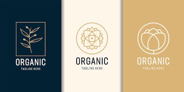 Conjunto de logotipo de modelo de árvore feminina e moderna orgânica.