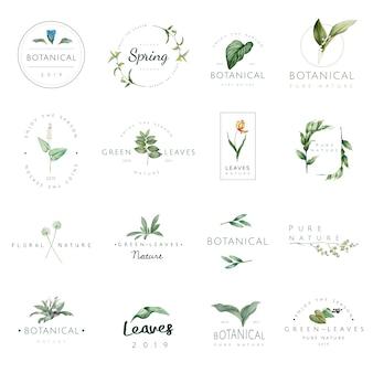 Conjunto de logotipo de natureza e planta