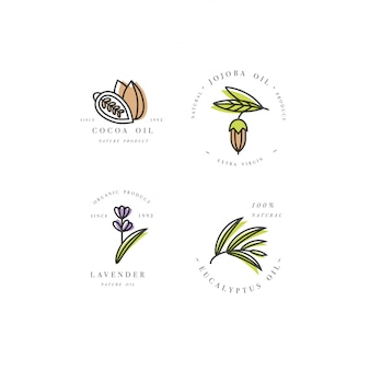 Conjunto de logotipo de óleos de beleza e cosméticos