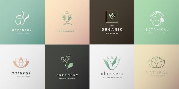 Conjunto de logotipo natural para branding em design moderno