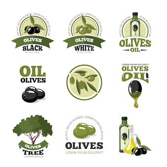 Conjunto de logotipo ou etiquetas de vetor de azeitonas