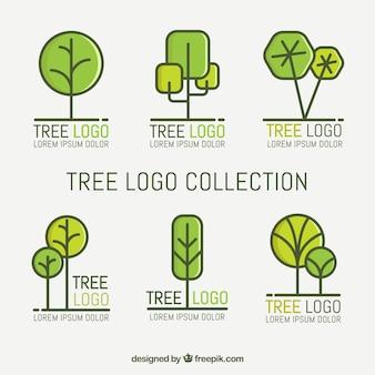 Conjunto de logotipos de árvore em estilo plano