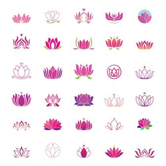 Conjunto de logotipos de lótus