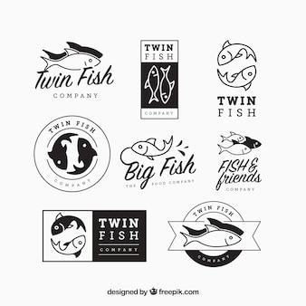 Conjunto de logotipos de peixes para empresas