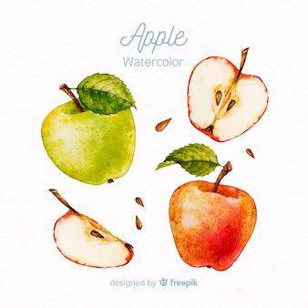 Conjunto de maçã em aquarela