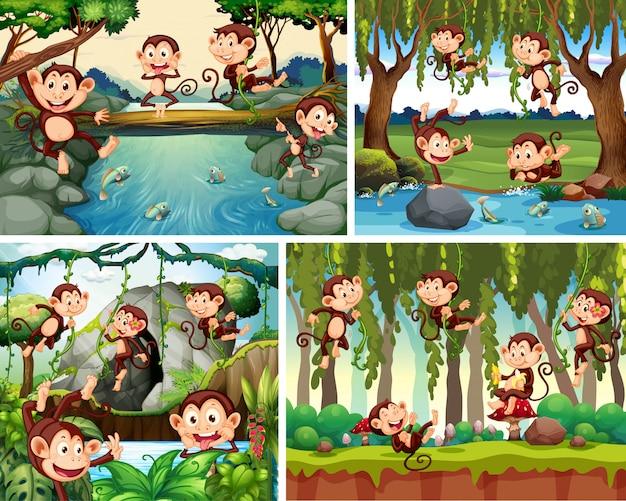 Conjunto de macaco brincalhão no fundo da natureza