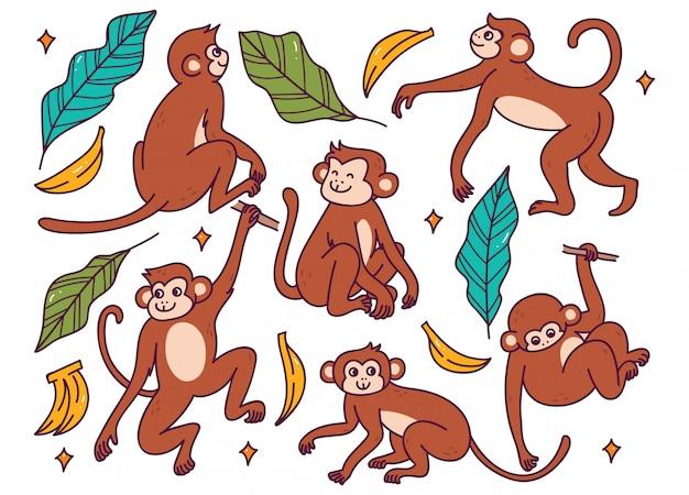 Conjunto de macaco em diferentes poses doodle