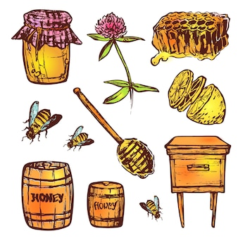 Conjunto de mão desenhada com elementos de mel. abelha, mel, casa de abelha, flores, favo de mel.