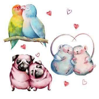 Conjunto de mão desenhada de casais de animais fofos no amor