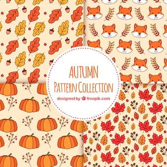 Conjunto de mão desenhada de padrões de outono