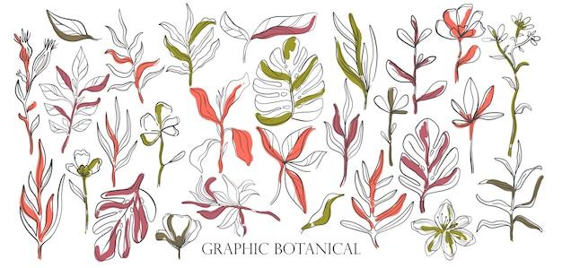 Conjunto de mão desenhada estilo esboço flores silvestres