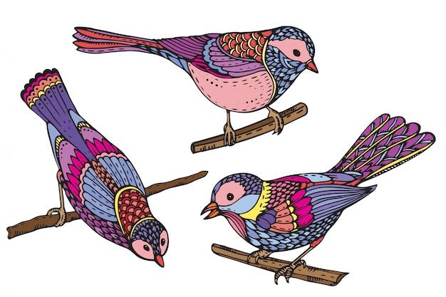 Conjunto de mão desenhada pássaros ornamentados. bela ilustração colorida
