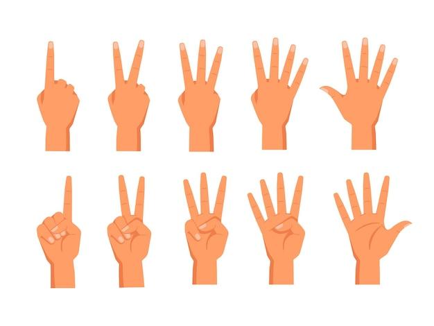 Conjunto de mãos de vetor mostrando a contagem de dedos