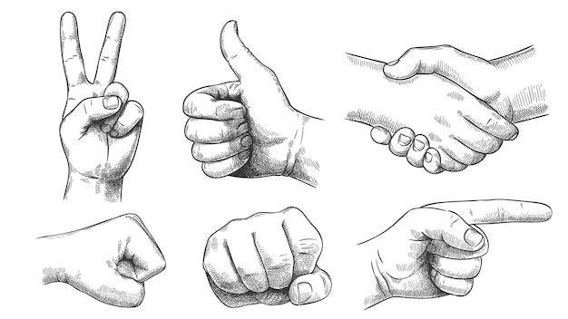 Conjunto de mãos e dedos desenhados à mão