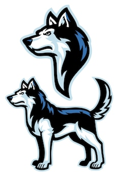 Conjunto de mascote de cão husky siberiano