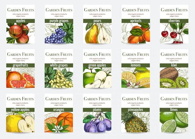 Conjunto de modelo de cartões de frutas