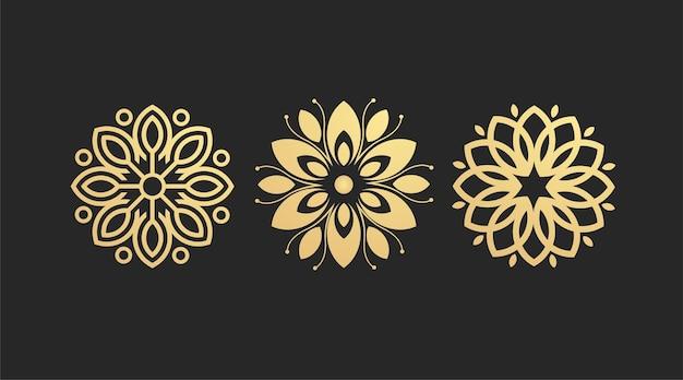 Conjunto de modelo de design de logotipo de beleza de flores douradas premium