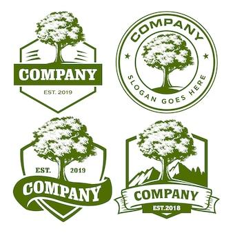 Conjunto de modelo de logotipo de árvore de carvalho