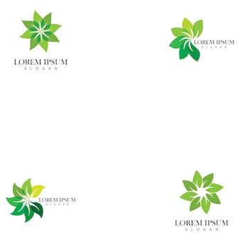 Conjunto de modelos de logotipo de folha