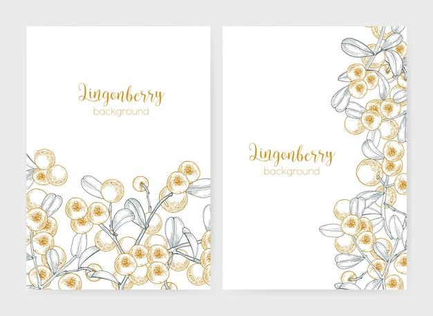 Conjunto de modelos de panfleto ou cartaz decorados com mirtilos desenhados à mão com linhas de contorno no fundo branco