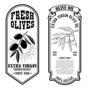 Conjunto de modelos de panfleto vintage de azeite.