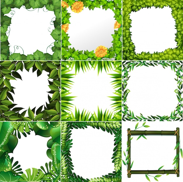 Conjunto de molduras diferentes da natureza