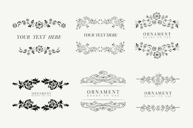 Conjunto de molduras florais clássicas