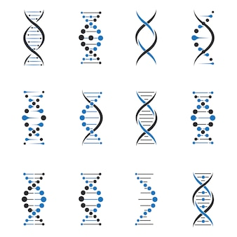 Conjunto de moléculas de dna