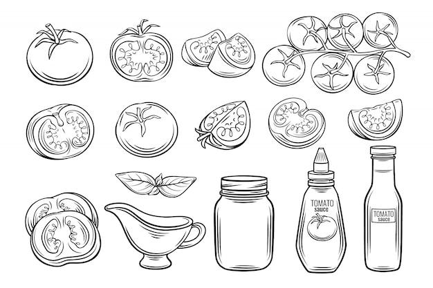 Conjunto de molho e tomate desenhado à mão