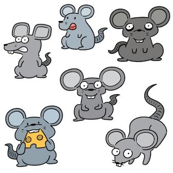 Conjunto de mouse