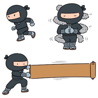 Conjunto de ninja