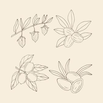 Conjunto de nozes desenhadas à mão